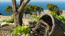 Santorini Heights, hotels in Pyrgos