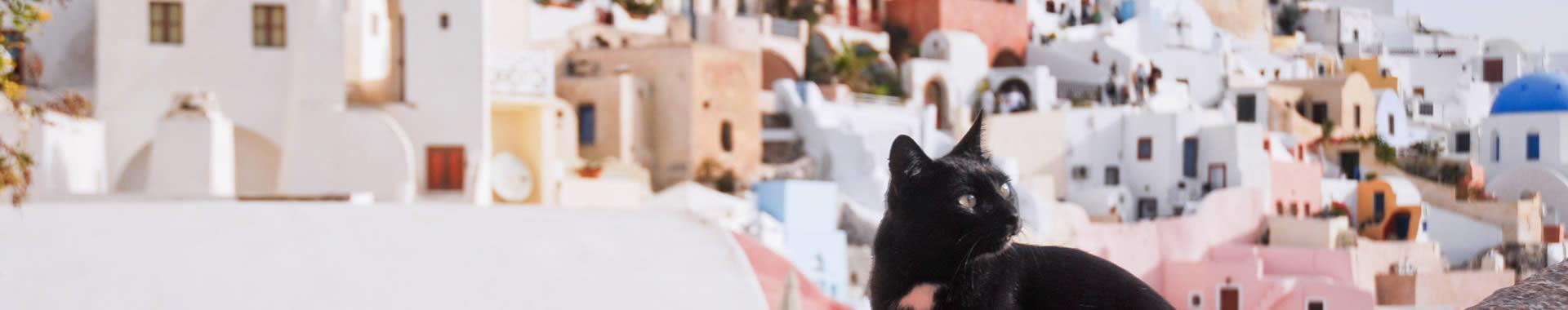 Santorini Pet Friendly Hotels