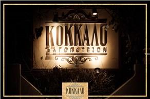 Kokkalo Restaurant - Restaurants - Santorini